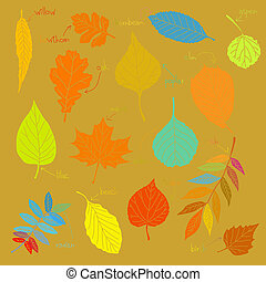 Color sheets - vector set of leaves from trees listennig