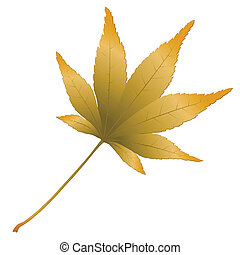 Japanese Maple leave, vector illustration
