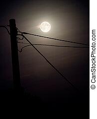 cheio, lua, céu, fundo