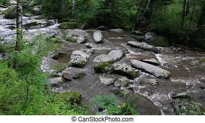 Belokurikha mountain river in Altai Krai. Russia.