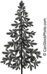 Christmas spruce fir tree silhouette - Christmas spruce fir...