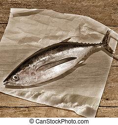 Albacore tuna sepia tone background - Albacore, rustic still...