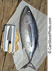 Albacore fresh fish on wooden background