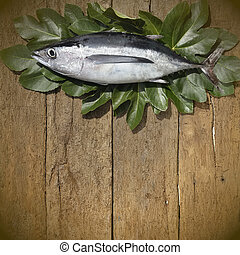 Albacore on wooden background - Albacore still life on...