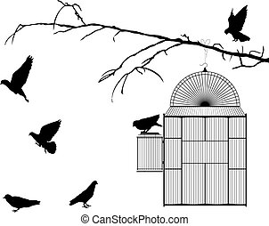 Bird cage silhouette over white background