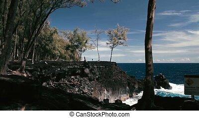 1080p, Beach At MacKenzie, Hawaii - 1080p, The worlds best...