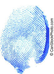 thumb print - a thumb print with blue paint isolated on a...