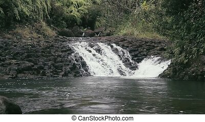 Waialeale Waterfall, Hawaii - 1080p, The topmost beautiful...