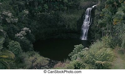 Waterfall On Hawaii - 1080p, The topmost beautiful...