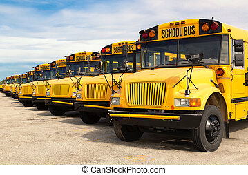 school buses - row of yellow school buses lined up in a...