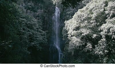Wailua Waterfall, Hawaii - 1080p, The topmost beautiful...