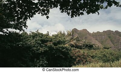 Kualoa Regional Park, Hawaii - 1080p, Landscapes of Hawaii,...