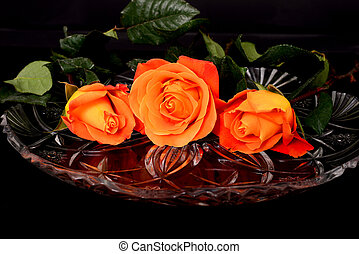 Rose Floral arrangement isolated over a black background