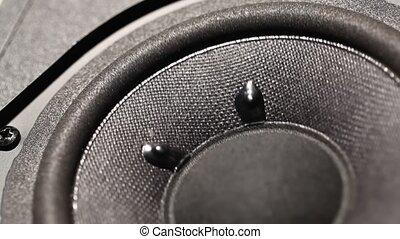 Woofer - A Close up of an Audio?Woofer