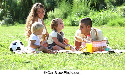 family of four on picnic - Happy family of four on picnic at...