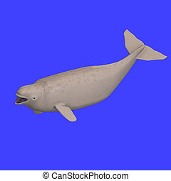 whitle beluga whale calf 3D rendering with clipping path
