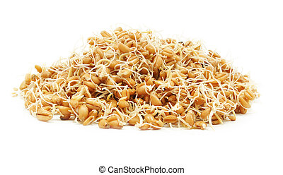 wheat germ on a white background