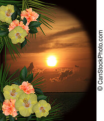 Tropical Hibiscus Flowers sunset - Image and illustration...