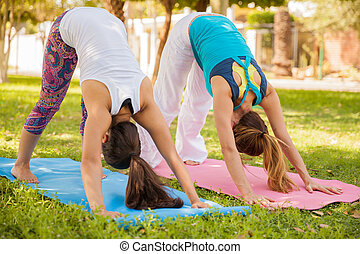 Trying some basic yoga poses - Young women trying the...