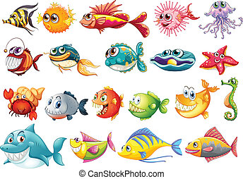 Fish set - Illustration of different kinds of fish