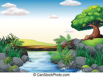Stream - Illustration of a scene of a stream