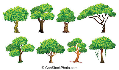 Tree set - Illustration of a set of many trees