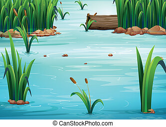 Pond - Illustration of a view of a pond