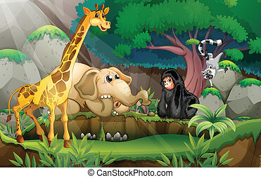 Animals in jungle - Illustration of many animals in a jungle