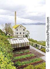 Alcatraz Garden & Power House, San Francisco, California -...