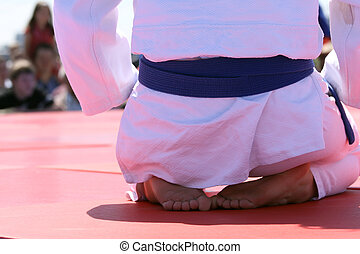 Judo, luchador