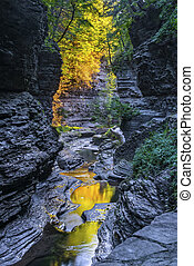 The Early Morning Color Of Watkins Glen State Park - Watkins...