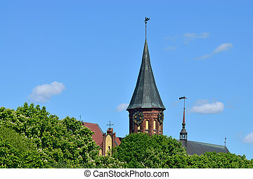Koenigsberg Cathedral and flowering chestnuts - Koenigsberg...