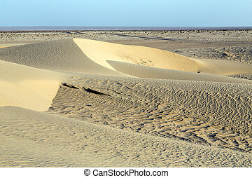 Sahara Desert, Tunisia - Beautiful sand patterns in the...