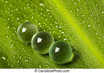 Marbles on wet leaf
