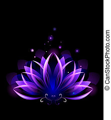 purple lotus - purple, glowing lotus on black background
