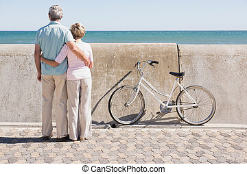 Happy senior couple looking out to the sea on a sunny day