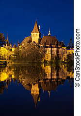 Night view of Vajdahunyad castle in Budapest Hungary
