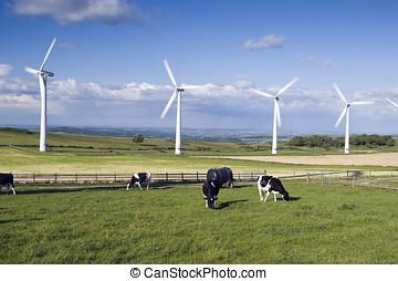 Wind Farm Yorkshire - Wind Turbines on Royd Moor above...