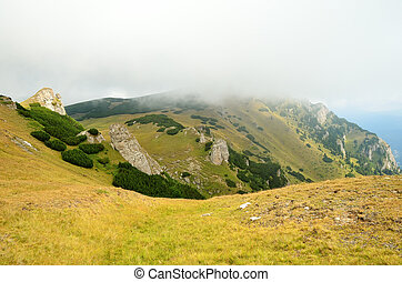 Carpathian mountains in a summer