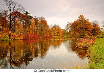 Colorful autumn trees on the lake - Beautiful autumn...