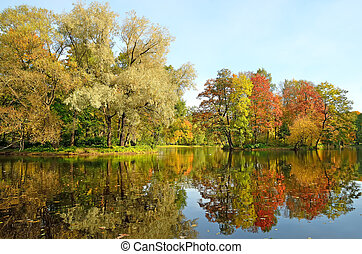 Colorful autumn trees on the Yelagin Island in St....