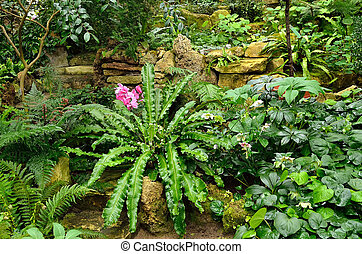 Subtropical plants in the greenhouse botanical garden