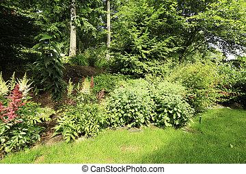 Home garden during summer time - Backyard with small garden