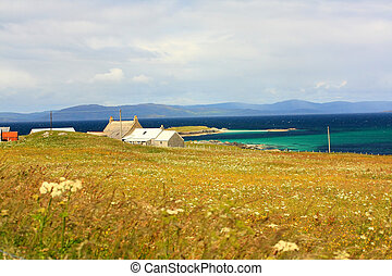 Iona island, Scotland , beautiful summer landscape