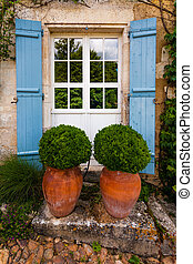 pots with bojs in front of a door - Beautiful gardening...