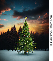 Composite image of christmas tree against fir tree forest in...