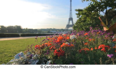 eiffel tower seen behind flowers - unusual view of the...