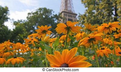 eiffel tower unusual view tilt - unusual view of the famous...