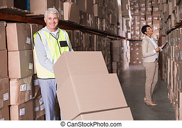 Warehouse worker moving boxes on trolley in a large...