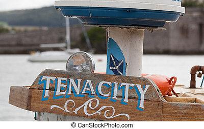 Tenacity - Wooden sign saying tenacity